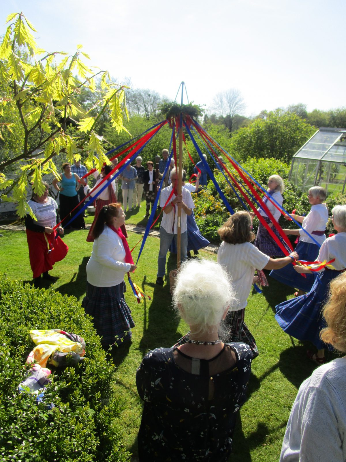 International folkedans